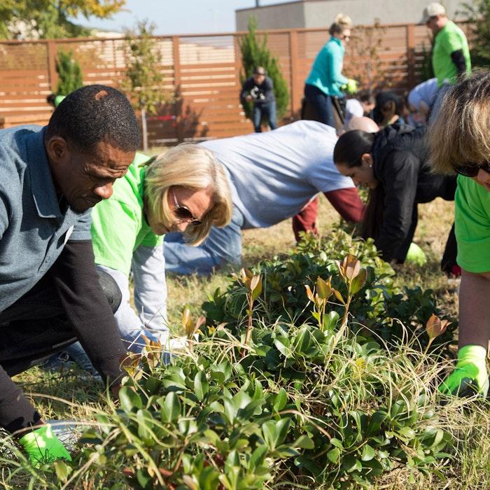group of volunteers garden